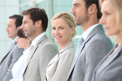 Executives in a row Royalty Free Stock Image