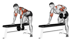 Exercising. End dumbbell with one hand Stock Photo