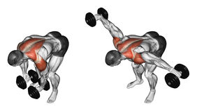 Exercising. Lifting dumbbell in hand to lean forwa Stock Photography
