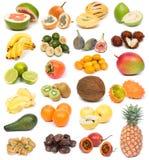 Exotic fruits Royalty Free Stock Image
