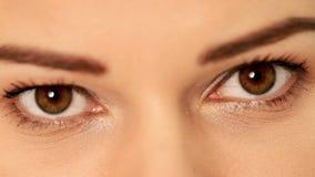Eye of a beautiful woman. stock video