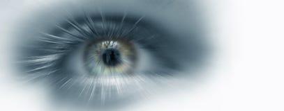 Eye vision