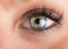 Eyes and long eyelashes Royalty Free Stock Photography