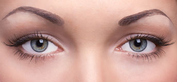 Eyes of a young woman Stock Photography