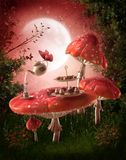 Fairy garden with red mushrooms Stock Photography