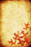 Fall Grunge Background Stock Image