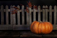 Fall Pumpkin Picket Fence Royalty Free Stock Images
