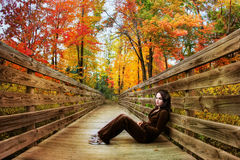 Fall season Stock Images