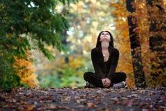 Fall season Royalty Free Stock Image