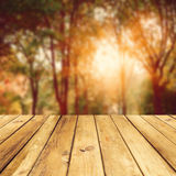 Fall season background Royalty Free Stock Image