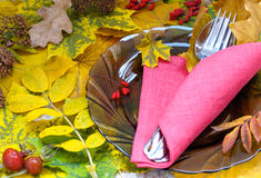 Fall Themed Table Setting Arrangement for Seasonal Party Stock Photography