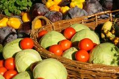 Farm seasonal vegetable Stock Image