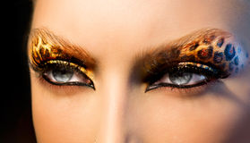 Fashion Girl with Leopard Makeup Stock Photography