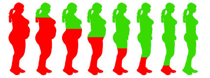 Fat to slim woman weight loss transformation healt Royalty Free Stock Photo