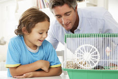 Father And Son Watching Pet Hamster Stock Photo