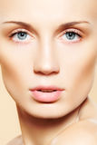 Female face with pure healthy skin & light make-up Stock Photos