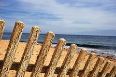 The fence Royalty Free Stock Images