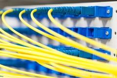 Fiber optic in spliter Royalty Free Stock Photo