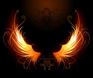 Fiery wings Royalty Free Stock Images
