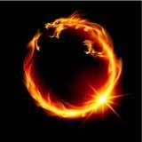 Fire Dragon Stock Photo