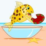 Fish eats a dish Stock Photos