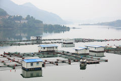 Fish farm in the reservoir Royalty Free Stock Image