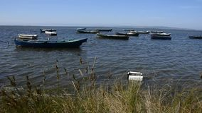 Fisher's boats stock video footage