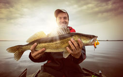 Fishing background Royalty Free Stock Images
