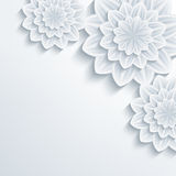 Floral elegant background with 3d flower chrysanthemum Stock Images