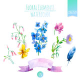 Floral Set with Watercolor Flowers for Summer or Spring Cards, Invitations, Flyers, Banners or Posters Design. Vector. Royalty Free Stock Photography