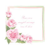 Flower Rose frame isolated on white background. Floral vector decor. Stock Photography