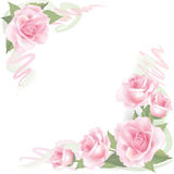 Flower Rose frame  on white background. Floral  decor. Royalty Free Stock Photos