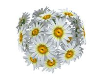 Flower sphere Royalty Free Stock Image