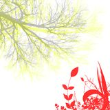 Flower and tree Stock Photography