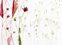 Flowers on background Royalty Free Stock Photography