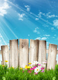 Wooden Fence And Spring Flowers Stock Photo