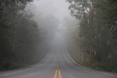 Fog on the way Royalty Free Stock Photography