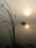 Foggy morning on Tulchinskom lake. Stock Images
