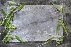 Food Background Herbs on Dark Slate Stock Images