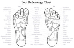 Foot Reflexology Chart Outline Royalty Free Stock Photo