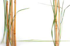 Frame from bamboo Stock Images
