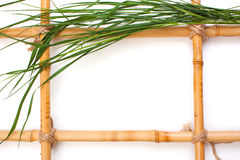 Frame for pictures from bamboo Royalty Free Stock Image