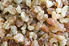 Frankincense for background Royalty Free Stock Images