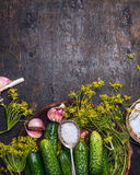 Fresh garden cucumber with ingredients for preserving: spoon of salt,dill  and garlic on rustic wooden background, top view Stock Image