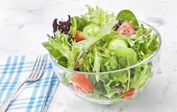 Fresh Green Salad Healthy Food Royalty Free Stock Photos