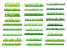 Fresh green spring grass borders Stock Photo