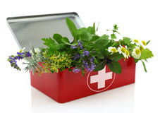 Fresh herbs in first aid kit Royalty Free Stock Image