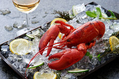 Fresh lobster on ice Royalty Free Stock Image