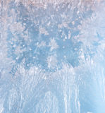 Frost patterns Royalty Free Stock Image