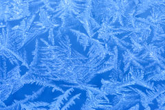 Frost on a window Stock Images